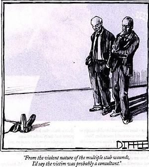 consultant cartoon.jpg